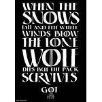 "T-shirt ""When the snows fall"""